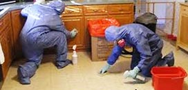 BTCSC at certified Decontamination Cleaners