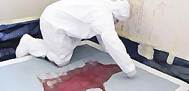 Forensic Cleaners Blue Bay